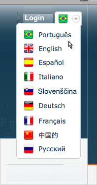 Website Translation Example - Brazilian Portuguese and other languages with flags